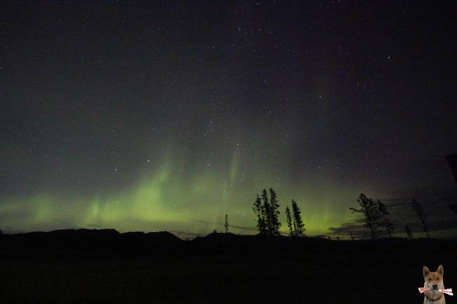 Canada - Aurora Borealis